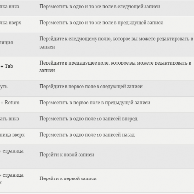 Rabota-s-formami-dannyh-Excel-2.png