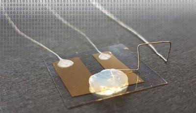 Исследователи KIT разрабатывают одноатомный транзистор